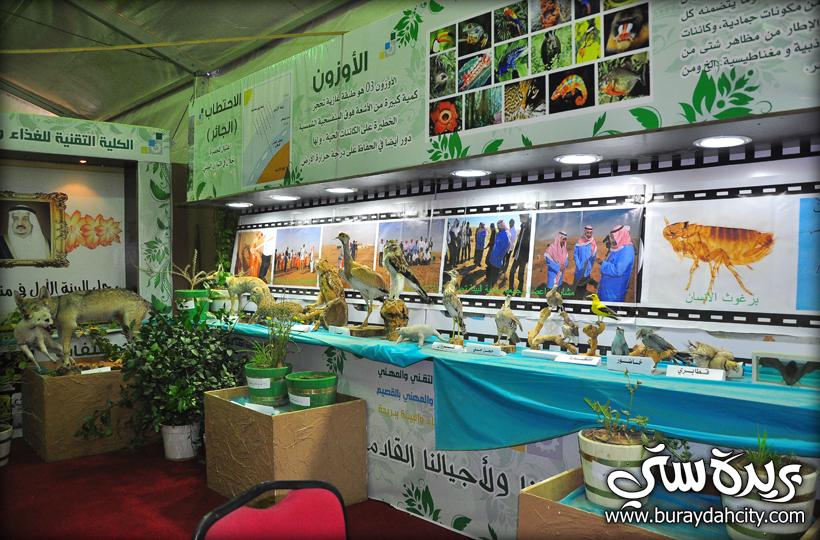 تغطية خيمة السياحة البيئية بمهرجان